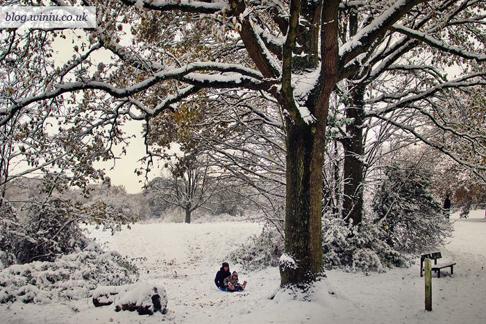 Southampton Common Park | December 2010 | Winter Snow